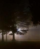 Мъгливо; No comments