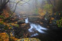''С дъх на есен и мъгла''