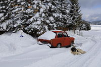 Зимна идилия; comments:7