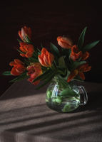 no name ( ID=2274027 ); comments:23