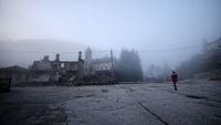 В мъглата...; No comments