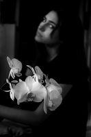Орхидейно; No comments