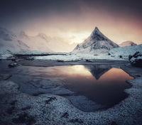 Арктическо настроение