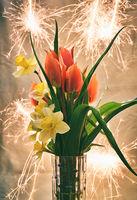 Празнуваме пролетта; comments:4