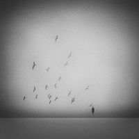 сбогуване с птиците; comments:10