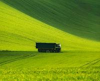 Пшеница....; comments:7