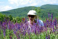 .... и цвят лилав; comments:3