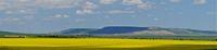 И естествено : Панорама с рапица ,баир и небе !; comments:9
