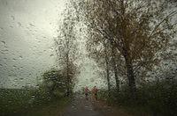 Дъждовно; comments:10
