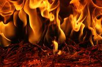Огънят отвътре; comments:4