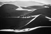 Сахара като от приказките нa Шехерезада; comments:16