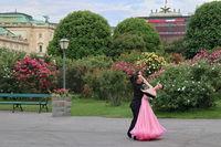 Танц сред рози; comments:5