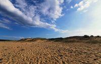 Стъпки в пясъка..; comments:2
