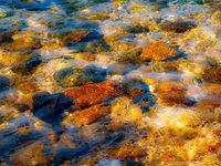 Цветовете на Егейско; comments:3
