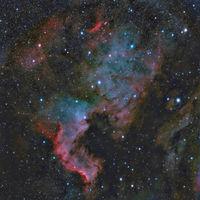 NGC 7000 - Мъглавината Северна Америка; comments:7
