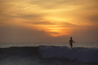 Surf Rise Morning; comments:2