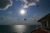 Спомен за едно море; comments:11