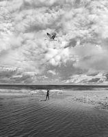 ...и знаеше, че като голяма птица с широки криле, лети над земята и вече не може да падне.; comments:4