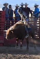 Cowboy; comments:2