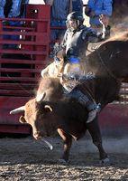 Cowboy 2; comments:6