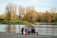 Зимен следобед в парка; Коментари:4