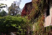 есен; No comments