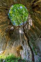 Пещерата с дървото -с. Ботуня; comments:6