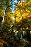 Есенно; comments:4