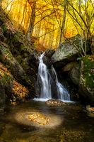 Есенна импресия; comments:3