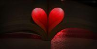 Love book; Коментари:2