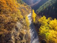 Път през есента; comments:3