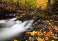 Песента на реката; comments:22