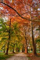 Есенно настроение; comments:2