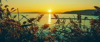 Слънчева пътека; comments:1