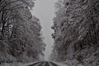 Зимно !; comments:4