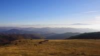 през три планини; comments:4