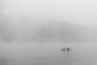 Мъглива вода; comments:8