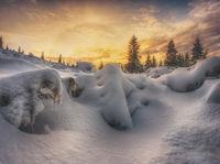 Снежно; comments:18