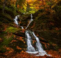 X фактор, сезон есен; comments:18