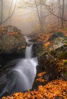 В мъгливата прегръдка на Балкана; comments:15