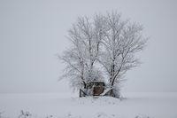 Зима; comments:5