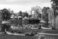 Езерото Ариана; comments:1