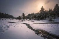 Зимно настроение; comments:4
