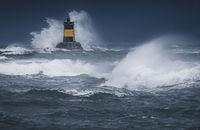 Морето е сърдито; comments:11