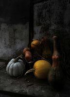 October still life; comments:1