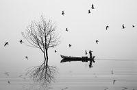 Ловецът на птици - II; comments:28