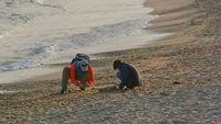 Зимни занимания на плажа; comments:4