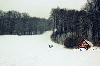 Разходка на 3-ма в закъснялата зима..; comments:5