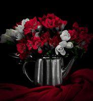 Flowers; comments:2