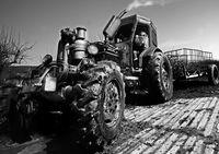 тракторИска...; comments:15